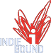 buy book on indie bound